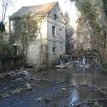 rivière, reconquete écologique, phytoremediation