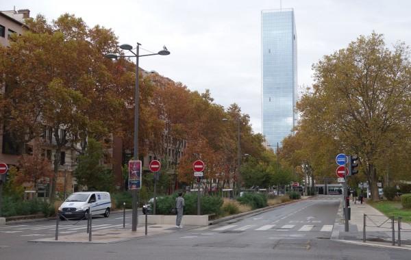 biodiversite en ville, nature en ville
